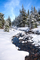 Winter Stream At Tahoe
