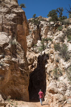 Cottonwood Narrows 03