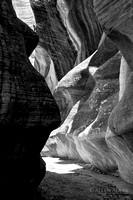 Willis Creek Slot Canyon IX BW